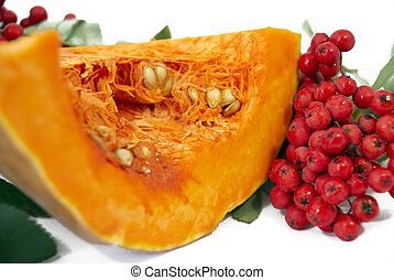 Pumpkin with the branch of wild ash - Hunch of pumpkin and...
