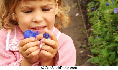 girl which attentively examines petals