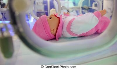 infant incubator for maintenance of babies in which small...