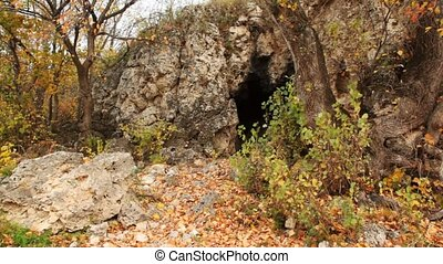 cave in rocks among trees in autumn - cave in rocks among...