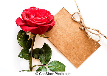 Rose flower, Valentines day and Sweetest day