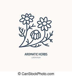 Chamomile vector line icon. Aromatic herbs logo, daisy chain sign. Linear illustration for natural camomile tea