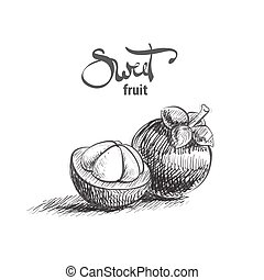 Sweet mangosteen illustration - Sweet tasty mangosteen on...