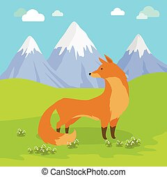 Red Fox Standing on the Meadow in the Mountains. - Red fox...