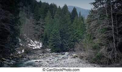 River In Wilderness Landscape - Wide shot of river in the...
