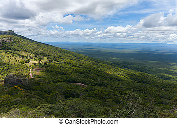 boundless expanse. view from mountains. Chiquitania. Bolivia...