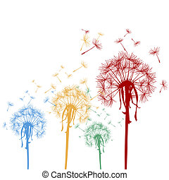 Colored dandelions