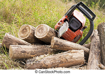 Chain saws cut logs in nature.