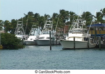 Docked Yachts - Fishing boats and yachts are docked at a...