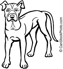 American Pit Bull Dog - Vector line drawing an american pit...