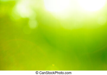 Abstract nature green background (sun flare). - Abstract...