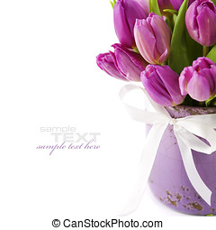 Pink tulips on white background (with easy removable sample...