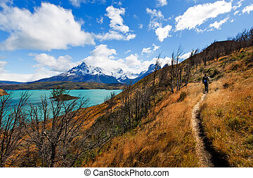 family in patagonia - family of two, father and son,...
