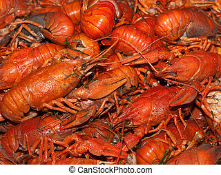 Boiled crawfish - a lot of hot fresh boiled red crawfish