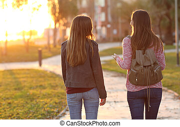 Friends walking together at sunset - Back view of two...