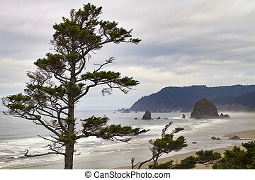 Foggy Morning at Tolovana Beach Oregon - View of Haystack...