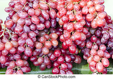 grapes - Red wine grapes background/ dark grapes, blue...
