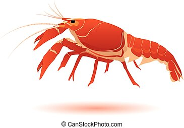the lobster vector design