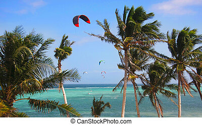 kites on bright sky and sea background