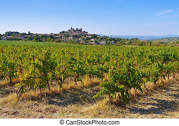 Saint-Pons-de-Mauchiens a town in southern France,...