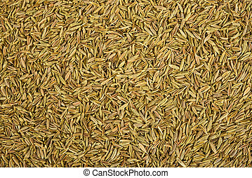 Dried Cumin seeds (caraway) background