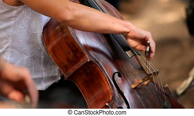 Cellist - Professional musicians playing cello in the...