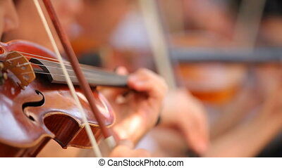 Violinists in the orchestra - Several violinists played...
