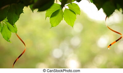 Feast on nature - Green petals of a tree with hanging beside...