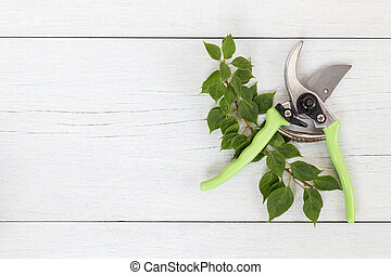 New green secateurs on white wooden. Top view - New green...