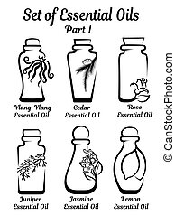 Set of stylized bottles with essential oils