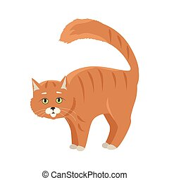Red Cat Vector Flat Design Illustration