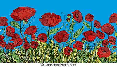 campo di fiori, i papaveri rossi con fondo blu