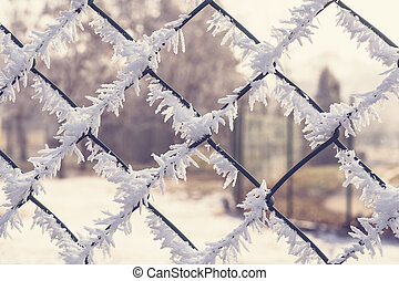 The fence covered with frost.