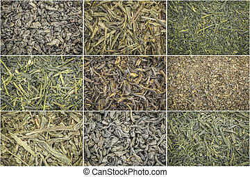 loose leaf green tea background - collage of nine loose leaf...