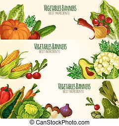 Vegetables and organic veggies vector banners set -...