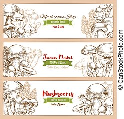 Mushrooms shop vector sketch banners set - Mushrooms banners...