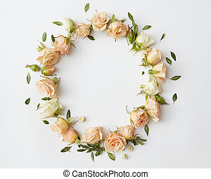 Roses on white background - Circle of beautiful roses with...