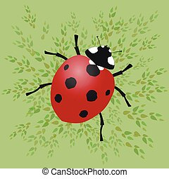 Ladybug - A ladybug vector illustration with green leafs on...