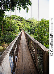 Swing bridge at the Menehune Ditch - and biy, did that thing...