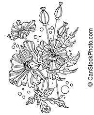 Poppy flowers coloring book vector illustration