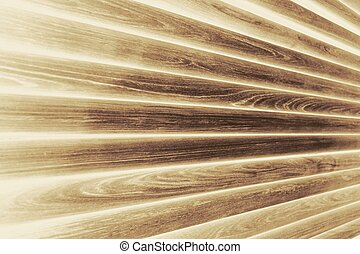 wood texture background - abstract of wood texture for...