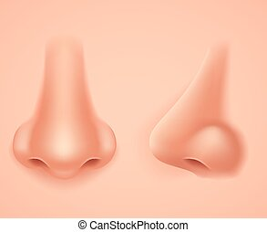 Front Profile Human Nose Realistic Background Isolated 3d...