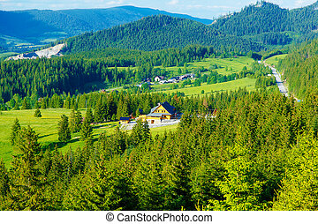 Rural cottage in the mountains and green meadow. . Slovakia....