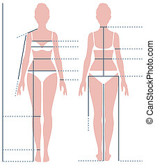 Female body in full length for measuring the size of the...
