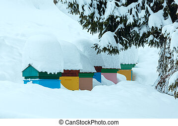 Beehives in winter Carpathian Mountains.