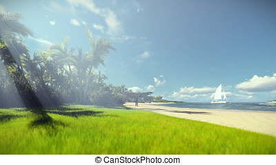 Grandfather resting and little boy with airplane running, tropical island, morning mist