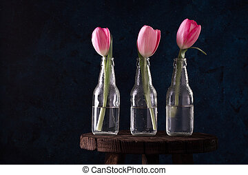 Fresh pink tulip flowers in three bottle in front of wall. View with copy space