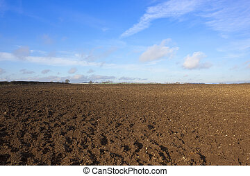 plowed earth and hedgerow - plowed earth in an english...