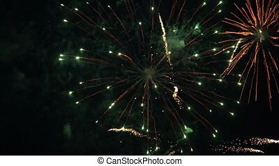 Colorful firework at night