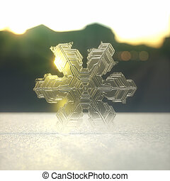 Snow Crystal / Snowflake - 3D illustration of a snowflake...